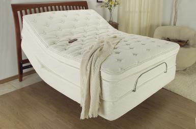 picture of Prodigy� adjustble bed.